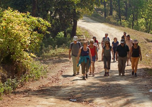 Travelers walking in Chitwan National parks during best of Nepal Tour package by North Nepal Travel