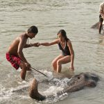 Elephant Bathing in Rapti River, Tributary of Narayani River, North Nepal's Chitwan Jungel Safari 5 days package