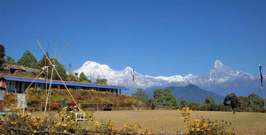 Views of 3 peaks Macchapuchre, Hiunchuli and Annapurna south lies under Annapurna conservation area, North Nepal's Australian camp 5 days package