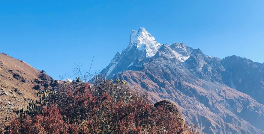 Machhapuchhre as seen from Mid-Camp,, North Nepal Travels and Treks