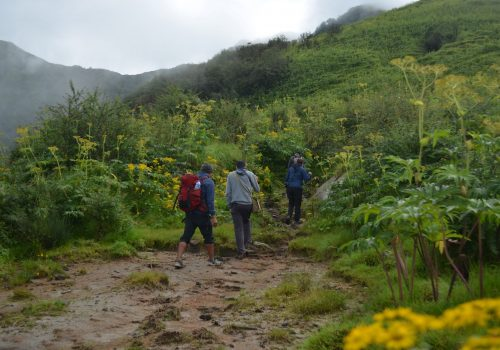 Trekking guide Jeewan and trekkers approaching the Machhapuchhre Model trek 2019.
