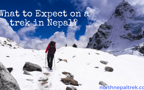 What to Expect on a trek in Nepal